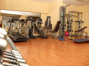 FisioterAcilia centro fisioterapia Palestra (1)